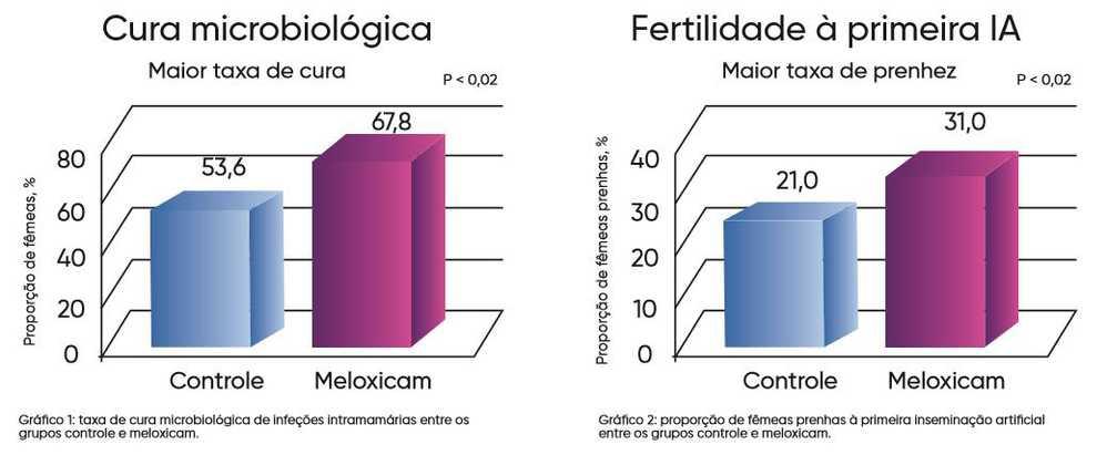 Proporção de prenhez à primeira inseminação artificial